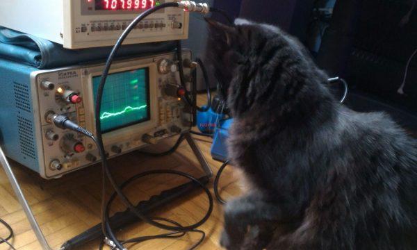 Prime prove del trasmettitore a 10GHz con diodo GUNN